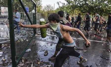 В Венгрии в драке с беженцами пострадало 20 полицейских