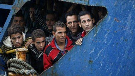 В Германии нашли применение мигрантам