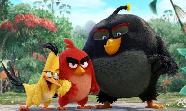 Вышел трейлер фильма по Angry Birds